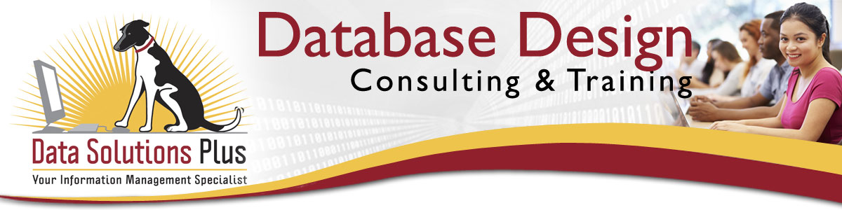 Data Solutions Plus offers Business Oriented Training in Operating Systems, Excel, Word, Access, and much more!!!